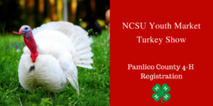 Cover photo for NCSU Youth Market Turkey Show