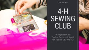 Cover photo for 4-H Sewing SPIN Club