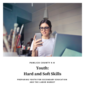 Cover photo for Youth: Hard and Soft Skills