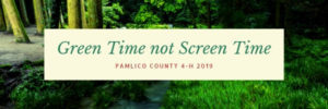 Cover photo for Green Time Not Screen Time