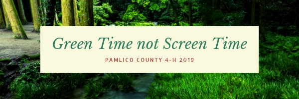 A banner reading: Green Time not Screen Time - Pamlico County 4-H 2019 in green and read font on a cream background. Partially obscured by the cream background a photograph of a forrest with a creek running through the forrest floor, soft, mossy grass to the right.