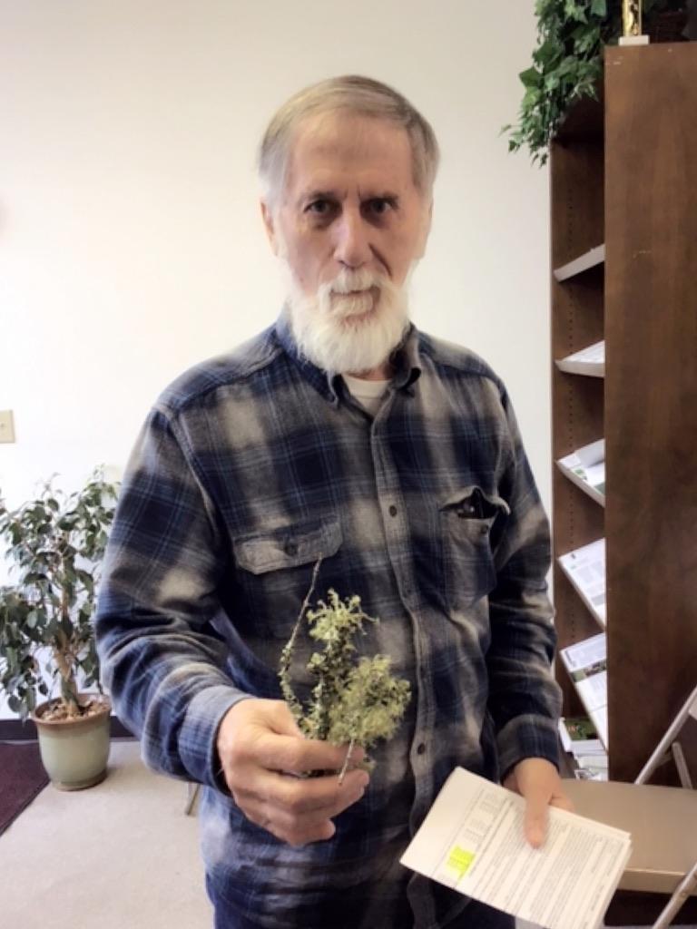 man holding a lichen