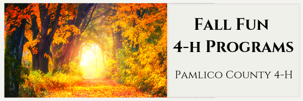 Banner: Fall Fun 4-H Programs - Pamlico County 4-H. Pictured a fall road