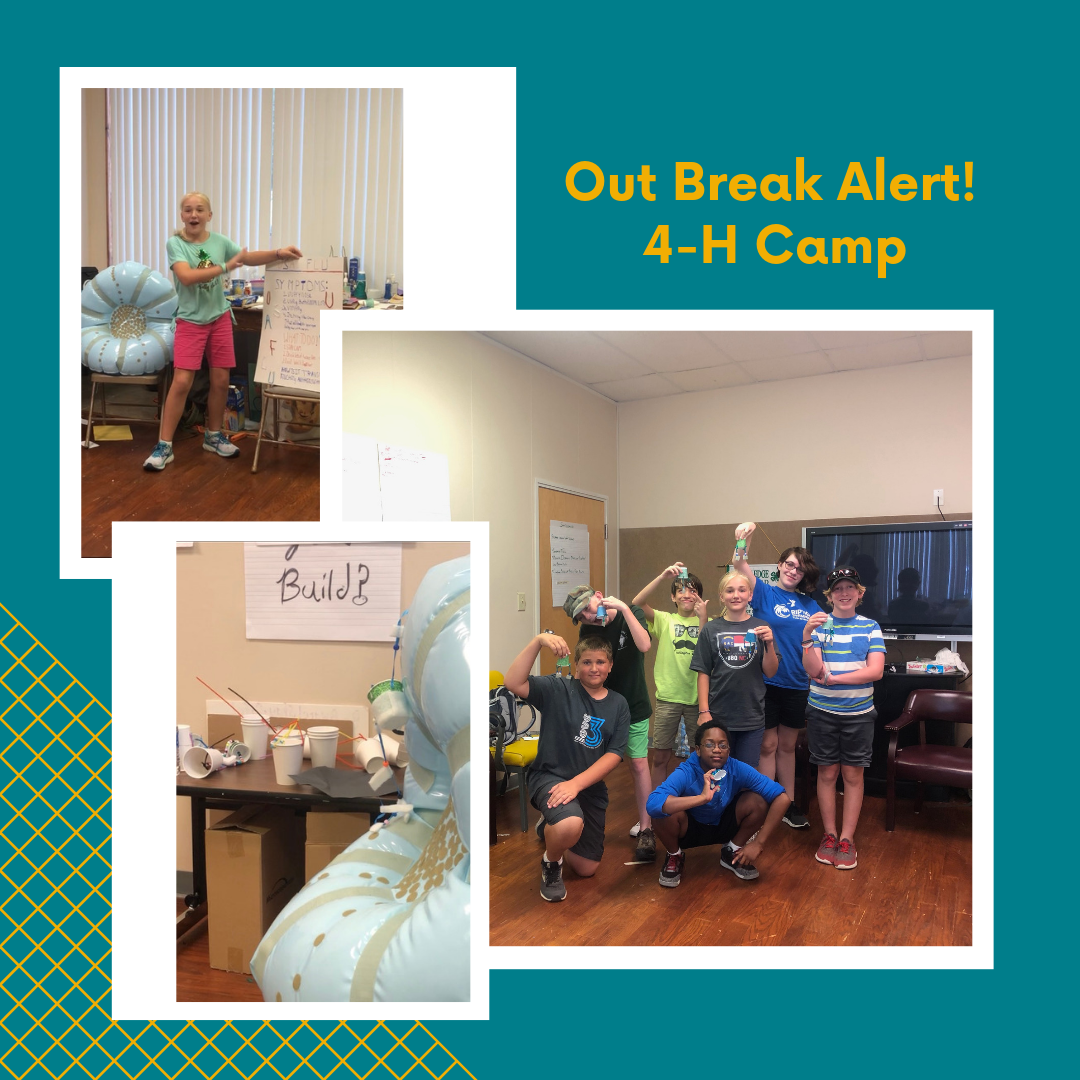 Outbreak Alert Photo Collage: Child presenting her PSA; Model of a cell, children posing with their model viruses