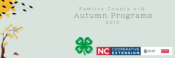 Pamlico County 4-H Autumn Programs 2019: Sun with leaves blowing across, autumn tree, two small mushrooms