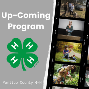 Cover photo for 2020 Upcoming 4-H Programs