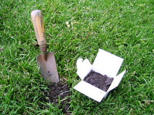 picture of lawn with trowel and soil sampling box