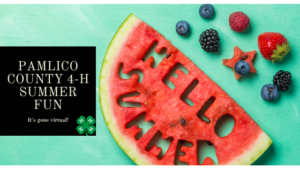 Pamlico County 4-H Summer Fun Banner