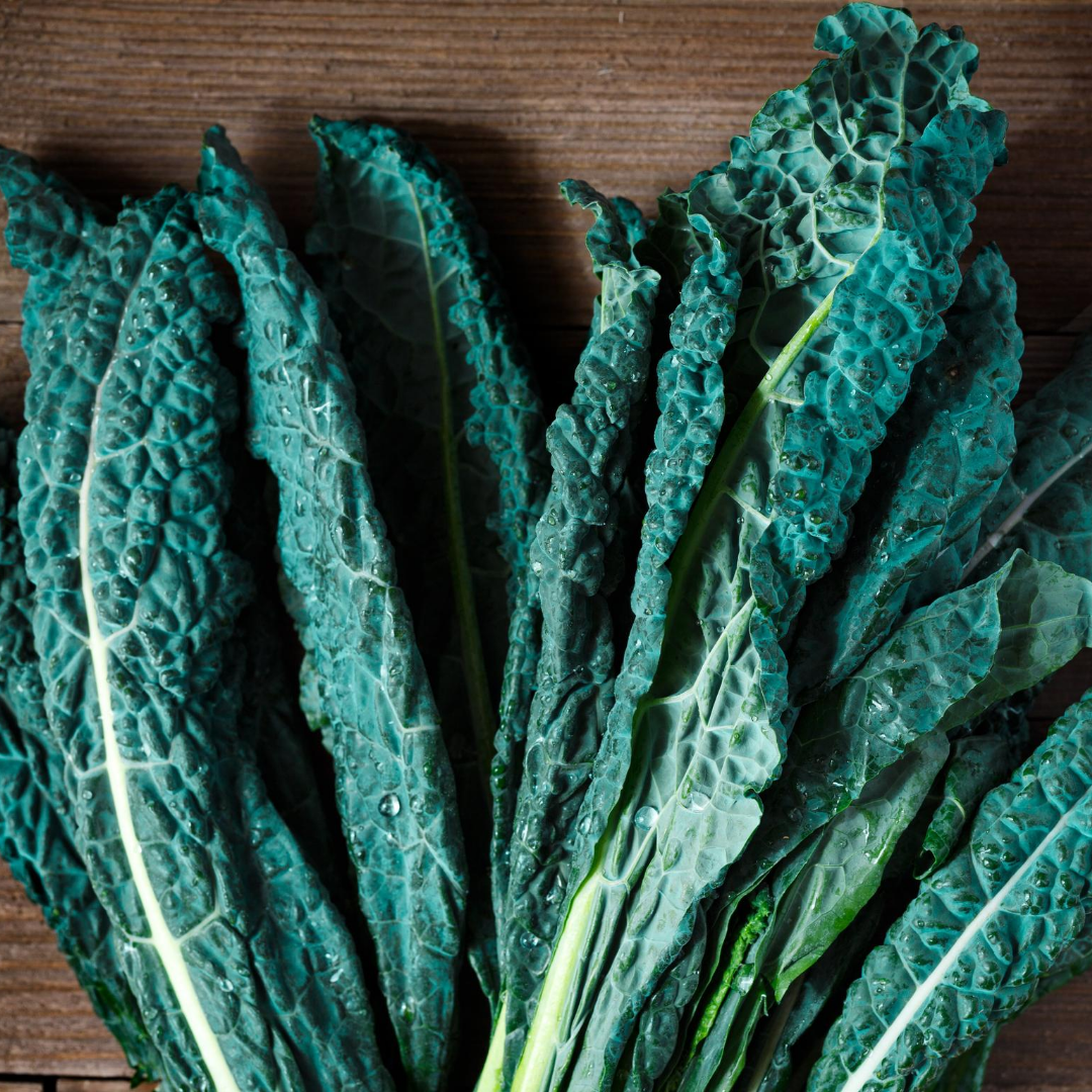 picture of kale leaves