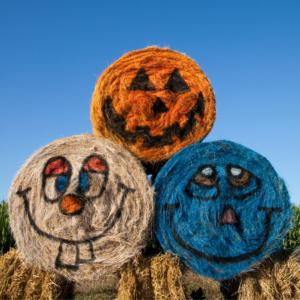 picture of three round hay bales decorated with silly faces